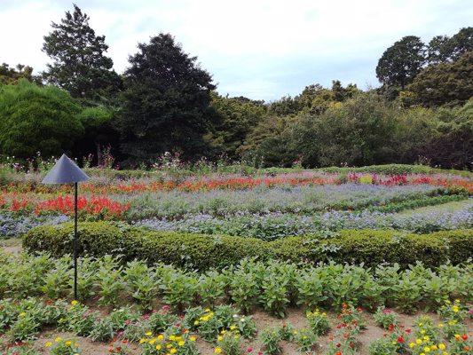 Parc de Nokonoshima
